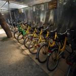 Biciclette per i Clienti